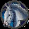 Бинки лошадь