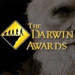 1 Тип »Darwin Awar ds