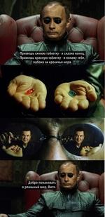 Примешь синюю таблетку - и сказке конец. Примешь красную таблетку - я покажу тебе, • глубока ли кроличья нора. Ц'