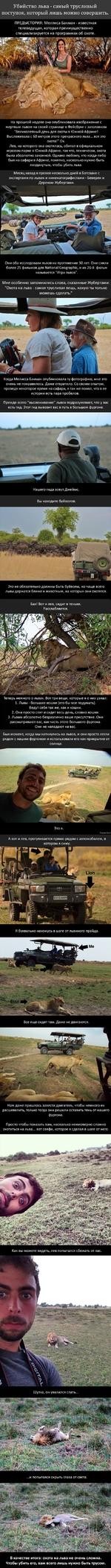 """Убийство льва - самый трусливый поступок, который лишь можно совершить ПРЕДЫСТОРИЯ: Меллиса Бакман - известная телеведущая, которая преимущественно специализируется на программах об охоте. На прошлой неделе она опубликовала изображение с мертвым львом на своей странице в Фейсбуке с заголовком """"Ве"""