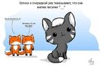 Котики в очередной раз показывают, что они милее лисичек Л л Какой симпатяга :3 Заткнись! Он же