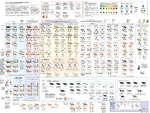 АТЛАС ОКРАСОВ ДОМАШНИХ КОШЕК Joumana Medlej, cedarseed.com Окрасы кошек состоят в целом из 2-х цветов, их производных (осветленных), добавляющихся ко многим вариациям,например, рисунков или добавления белого. Все эти вариации и комбинации могут соединяться в определенном порядке и составить разли