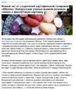 Бизнес /Торговля, Сельское хозяйство Сегодня в 10 29 Новый хит от создателей картофельной газировки «Мжола»: белорусские ученые вывели розовую, синюю и фиолетовую картошку Не так давно мы обсуждали оригинальную разработку белорусских ученых — картофельную газировку под названием «1\/Нкола». И во