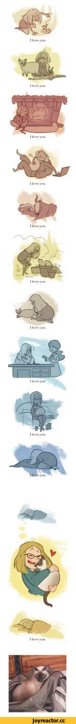 I love you. I love you. I love you. I love you. I love you. I love you.