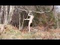 Норвежская художница застряла голой на дереве, снимая видео инсталляцию,Film & Animation,,Норвежская современная художница Хильда Крон Хьюз рассказала, что ее голый перформанс, который она сняла на камеру, прошел не так, как она хотела. Девушка забралась на дерево и свесилась с него на веревке, одна