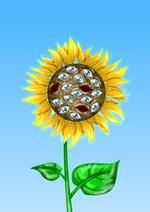 подсолнух растение цветок глаза странно непонятно личное art / красивые рисунки и картины / Смешные картинки, приколы...
