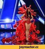 2015 Miss Universe Preliminary Competition,Entertainment,Miss Universe,Paulina Vega,Miss Venezuela,Miss World,Miss Earth,Beauty Pageant,Donald Trump,Beauty Queen,Beauty Contest,Bikini Competition,Evening Gown,miss universe 2015,http://www.missuniverse.com The 80 contestants will compete in