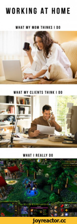 Working at home what my mom thinks i do what my clients think i do what i realle do
