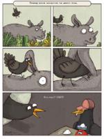 Поиему возле носорогов так много птиц.
