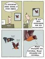ХОЧУ БЫТЬ СВОБОДНЫМ, КАК ЭТА летучая собака Маши крыльями или 'сдохнаиь. Маши крыльями или сдохнаиь.