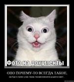 фото на документы. ОНО ПОЧЕМУ-ТО ВСЕГДА ТАКОЕ, как будто прямо у вас перед глазами внезапно родился мент... demotivatton.ru