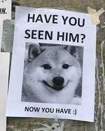 I  HAVE YOU SEEN HIM?    re Jb V^ v- •  чЯ