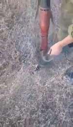 Армия России,,Голодный солдат сжег БТР, пытаясь разогреть консерву на костре.
