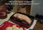 что за история, создатель, быть в Кухне сдержанным Котом!!!