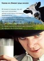 Корову не убивают ради молока Её пытают в среднем пять лет: насильно осеменяют, держат в состоянии постоянной^^^^^ беременности, подключают к причиняющей боль машине отбирают её детей и убивают их. И только тогда убивают её.ж