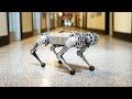Backflipping MIT Mini Cheetah,Science & Technology,MIT,MIT Cheetah,robotics,Biomimetics robotics lab,Sangbae Kim,Mechanical Engineering,MIT News,Massachusetts Institute of Technology,backflip,gymnastics,four-legged,cheetah,robot,MIT'S new mini cheetah robot is the first four-legged robot to do a