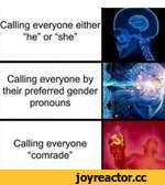 "Calling everyone either ""he"" or ""she""