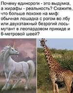 Почему единороги - это выдумка, а жирафы - реальность? Скажите, что больше похоже на миф: обычная лошадка с рогом во лбу или двухэтажный безрогий лось-мутант в леопардовом прикиде и 6-метровой шеей?
