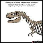 Мы никогда не узнаем, как динозавры выглядели на самом деле, потому что их тела сгнили задолго до того, как ученые их откопали. {о) @реГ_/оо/егу