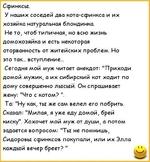 Сертификат соответствия Техническому Регламенту цена от 3000.00 до 100000.00 руб., купить в Москве.