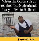 wuen me Corona virus reaches The Netherlands _but you live in RolIanH