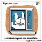 Rabbit Travel - Quarantine is...
