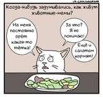 VI* .СОПЛ /иОО$1А£ Когда-нибудь задумывались, как жиВут жиВотные-мемы? На меня постоянно • • орет какая-то тётка! За что? Я не понимаю! Ещё и салатом кормят!