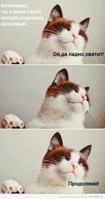 Продолжай! ______ I I001nwm.ru Котееейка, ты у меня такой милый,хороший, красивый