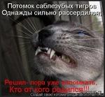 Потомок саблезубых тигр Однажды сильно рассерди. ттм, Создай свою KOTOMaTpniHyJHaikotomatriMu