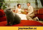 """Создай свою котоматрицу на kotomatrix.ru Lie люди,жениться нужно в марте, """"дровь играет и гю ночам на каЗЙ/ тяне"""