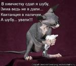 В химчистку сдал я шубу, Зима ведь не в дали... Квитанция в наличии, ** А шубу... увели!!! Создай свою котоматрицу на kotomatrix.ru