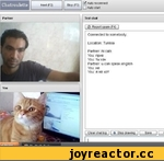 Chatroulette Next (F2) I I Stop (F3) H AU'° ,eCOnneCt |__11□ Auto start Text ch.it 0 Report spam (F4) 1 Connected to somebody. Location: Tunisia Partner: hi cats You: npMB You: Tb< X2H Partner: u can speak english You: He You: a >Ke kot Paitnei
