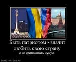 Быть патриотом - значит любить свою страну А не критиковать чужую. DEMOTIVATORS.RU