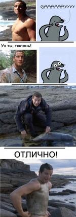 6Р\Р|Р>Р|Р>Р|УУУУ Ух ты, тюлень! ОТЛИЧНО!