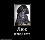 Люк я твой котэ demotivators.ru