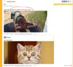 zdravstvui anon КОТЭ интересно совпало) 18:11:28; 19 Mar 2013 код для блога и Форума ссылка скрыть LJ О 18:15:02; 19 Маг 2013 код для блога и Форума ссылка скрыть С,) 5 (-5 котэ,прикольные картинки с кошками