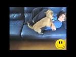 Видео приколы №1 (Smile Show),Entertainment,,нарезка весёлых кадров от которых хочется улыбнутся!)))
