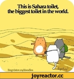 lilis is Sahara toilet, the biggest toilet in the world.